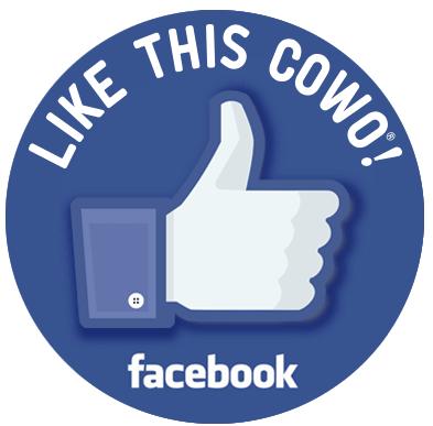 Facebook Lugano Coworking